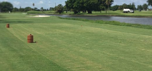 Use the Teeing Area to your Advantage - Image of tee box